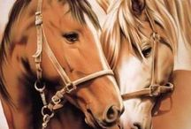 Art/Horses / Horse horses equine / by Carol Gray