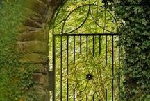 Enchanted Garden Fantasy / Share my fantasy garden - please  pin away, I won't block you. / by PurpleRosebud