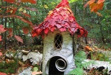 Outdoor home ideas / by Kimberley =^..^=