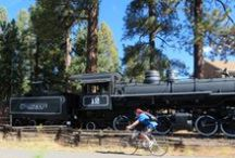 5 fool proof reasons to visit Flagstaff, AZ / Whether you want to hike, bike, snow ski, or simply shop Flagstaff is family fun in one terrific package!