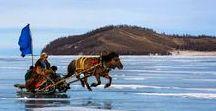 Events Mongolia
