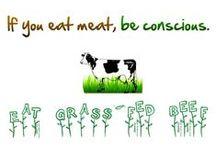 Why Grass Fed? / Beef.bar10blog.com