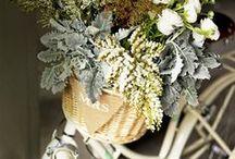 Flower shop / Love flowers x