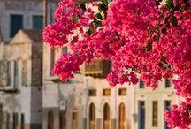 Meet me in Santorini