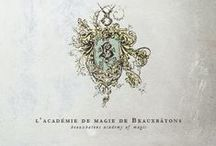 Beauxbatons Finest / The grand splendour that is receiving the finest education in Europe from Beauxbatons Academy of Magic.