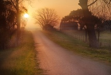 Country Backroads / by FarmersOnly