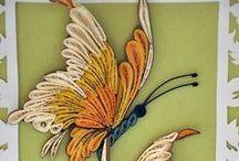 Quince / mariposas en el cumpleaños
