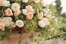 Kompozycje Kwiatowe | Flower Arrangements