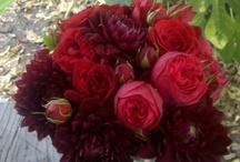 Florals / by Lisa Medina
