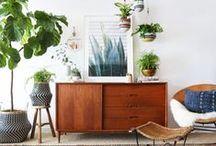 Vintage and green home / Inspiration for our vintage and green home. Inspiratie voor een groen huis, groen leven met tweede hands en vintage interieur. Voeg planten toe aan je kamer en slaapkamer voor een gezonde omgeving.