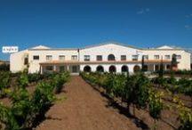 Entorno Restaurante La Espadaña / En la Milla de Oro de la Ribera del Duero se encuentra el Restaurante La Espadaña de San Bernardo. No dejes de visitar Bodega Emina y su museo, el Monasterio de Valbuena y los viñedos que lo rodean entre otras maravillas.