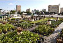 Urban Garden / Inspiratie voor mijn toekomstige achtertuin/balkon.