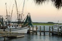 Lowcountry / The Lowcountry of South Carolina and the Sea Islands.