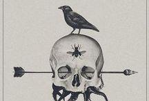 | skullz | / by Alessia Ranieri