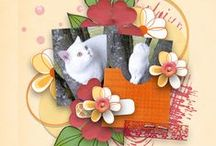 Mes pages C&S kits ACO