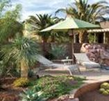 Landscape inspirations - pool friendly