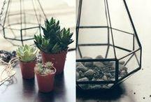 DIY Home Decor & Furniture