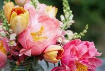 Flowers Arrangements and others beauties...