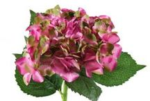 Dal Yapay Çiçek