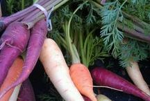 The Best of Vegetables / Fresh and seasonal - local  produce is best