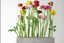 Flower Arrangements / Flower Arrangements by Amaryllis-Creations.gr