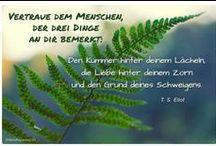 Zitate / Bilder mit Weisheiten, Zitaten, Humor, Sprichworten und Affirmation für jeden Tag. Die schönste Zitate und Weisheiten Sammlung im Netz. TÄGLICH UM NEUN auf www.MeinPapasagt.de