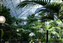 The Outdoors, Indoors / Eden project, Barbican Conservatory, Kew Gardens
