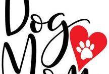 L'amore ha l'aspetto di un cane