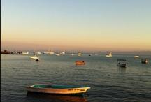Puerto Jimenez, OSA, CR / A visit to the OSA.