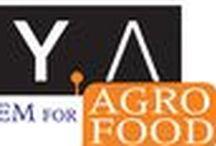 AgroFood / Sistemi di disinfestazione e abbattimento di carica batterica a microonde