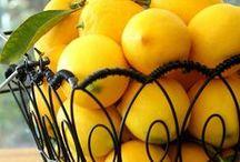 All Things Yellow / ... happiness, sunshine, brightness, birth, joy...