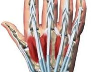 Håndterapi