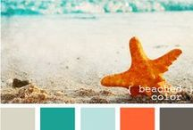 Color Palettes / Live life in color!