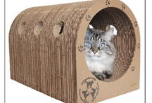 Catpods Products / Eco-friendly furniture designed for the feline mind. Lasts for Years.