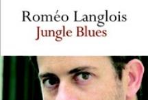 Roméo Langlois / Roméo Langlois chez www.donquichotte-editions.com