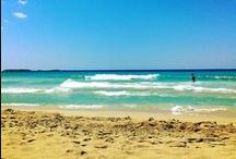 The Beach / I love the Beach, it's where I belong!