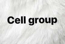 ~CellGroup~