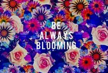 FLOWERBOOM / Flower explosions make the world a better place.