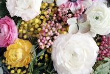 F L O R A / - nothing like a fresh bouquet to brighten our day -