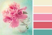 colour Paletts