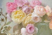 pastels & flowers