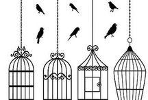 birds ...