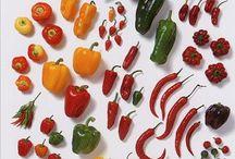 Food / Healthy & delicious & beautiful