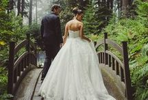 Weddings / Weddings and anything about them
