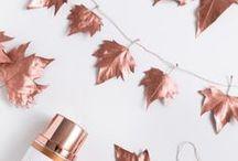 Herbst DIY & Bastelideen / DIY Anleitungen und Bastelideen rund um selbst gemachte Herbstdeko.