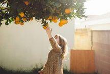 Favorite Things  / by Katie Anne Murphy