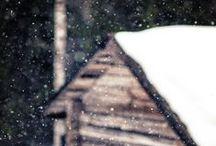 winter / by Deirdre M