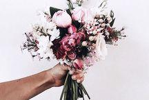 • Flowers/Trees •