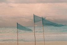 Sea Side  / Love Sea Side / by Tiare Molinare