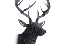 Stag | Antlers / by Tarnya Harper